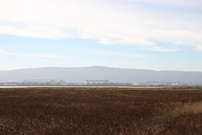 Moffett Field and NASA Ames Research Center from Alviso Slough