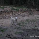 Jezioro szkliste (20.08.2009)