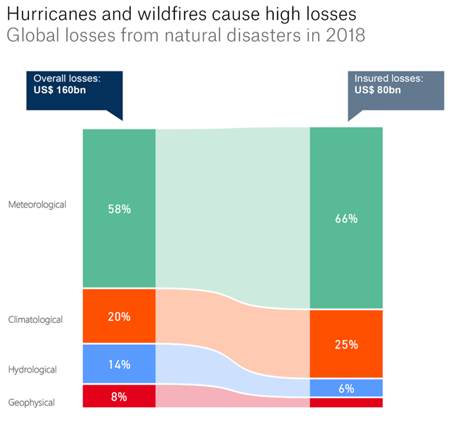 Insured and uninsured global losses from natural disasters in 2018. Graphic: Munich Re