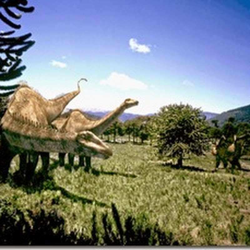 The Unique Sauropod of Jurassic Period, Diplodocus