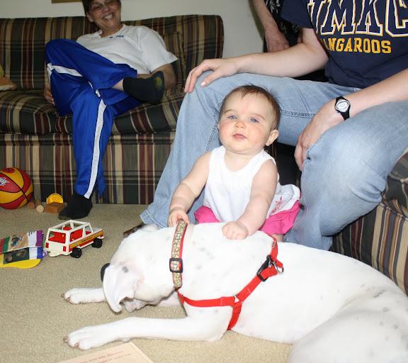 Lil Diva tackling the Reba puppy (my sister's dog).