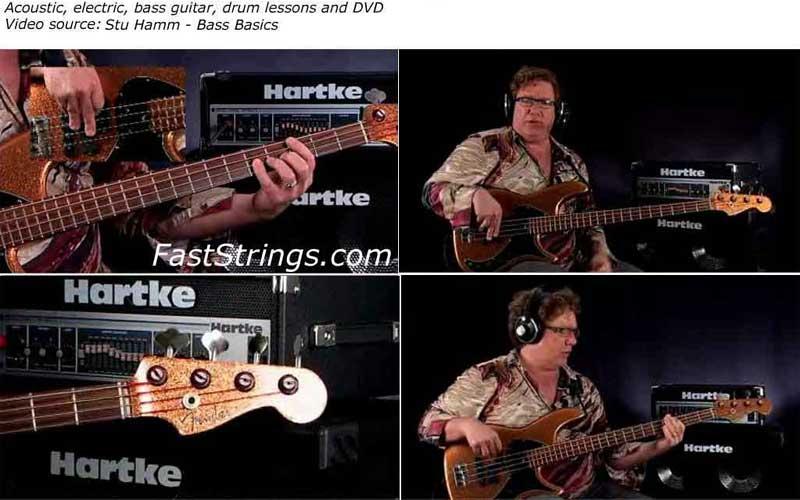 Stu Hamm - Bass Basics