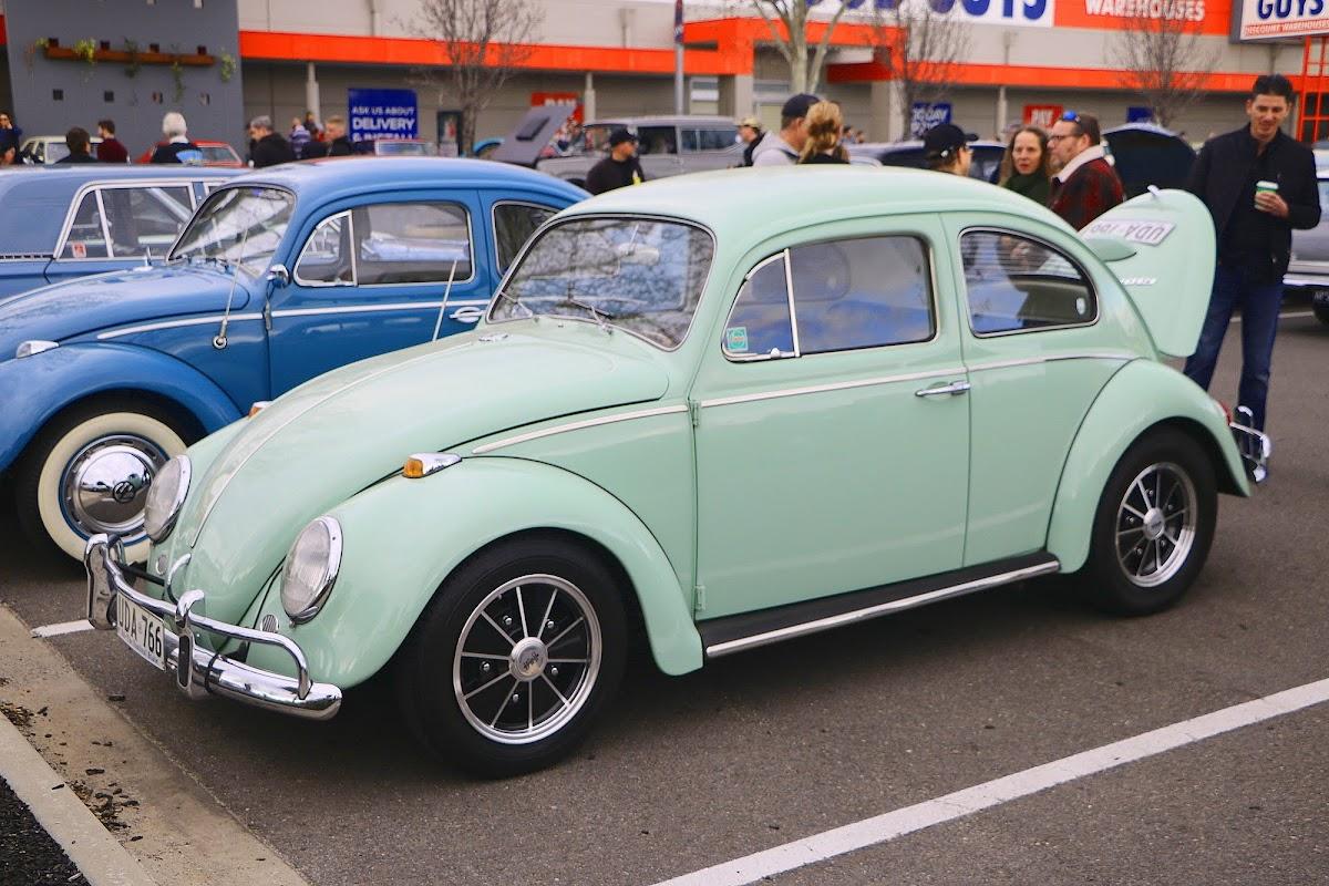 VW BEETLE (01).jpg
