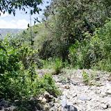 Affluent du Rio Coroico (au nord de Coroico à 1030 m d'alt., Yungas, Bolivie), 15 octobre 2012. Photo : C. Basset