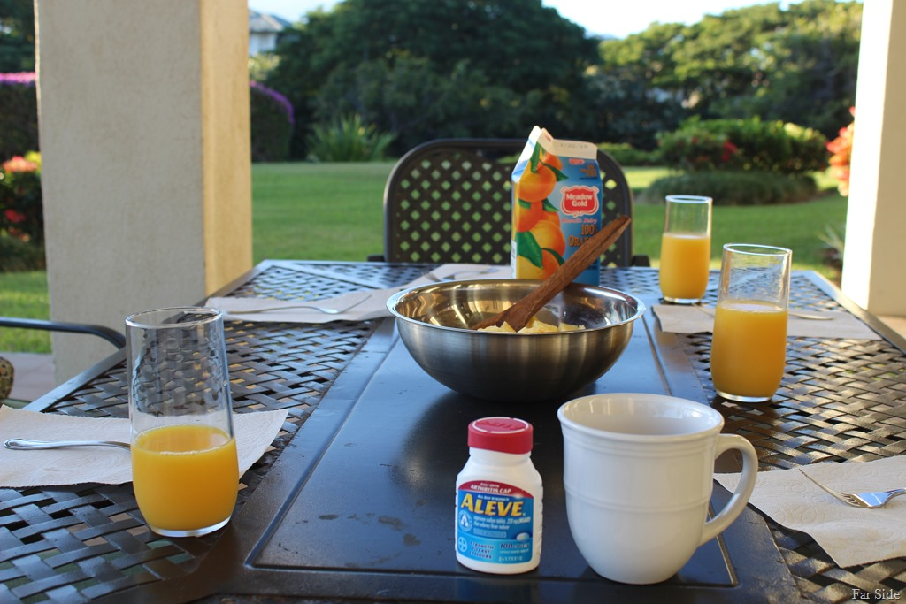 [Breakfast+on+the+lanai%5B8%5D]
