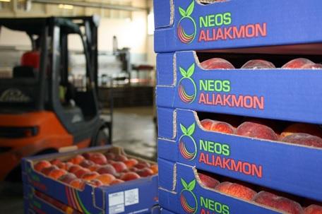 "O Αγροτικός Συνεταιρισμός ""Νέος Αλιάκμων"" ζητάει προσωπικό"