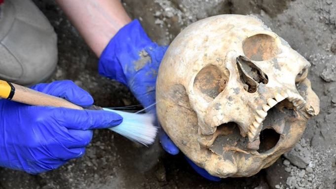 cranio-pompeia