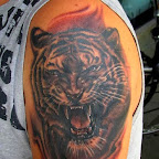 tiger - tattoos for women