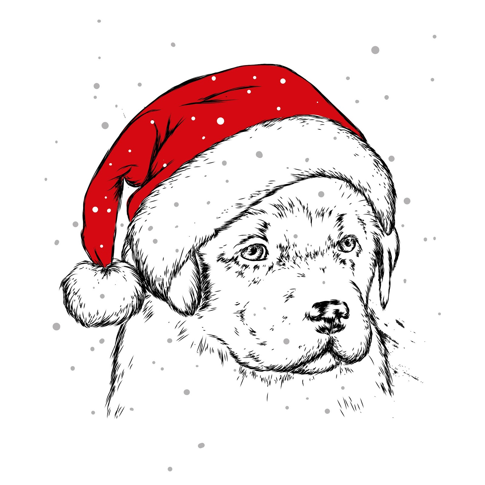 Puppy Christmas Hat Santa Claus Dog New Year Christmas Winter Holidays Vector Illustration Postcard Print Clothes Free Download Vector CDR, AI, EPS and PNG Formats