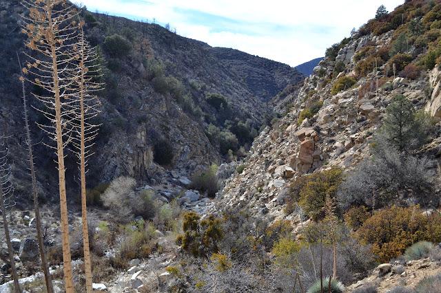 view up Piru Creek