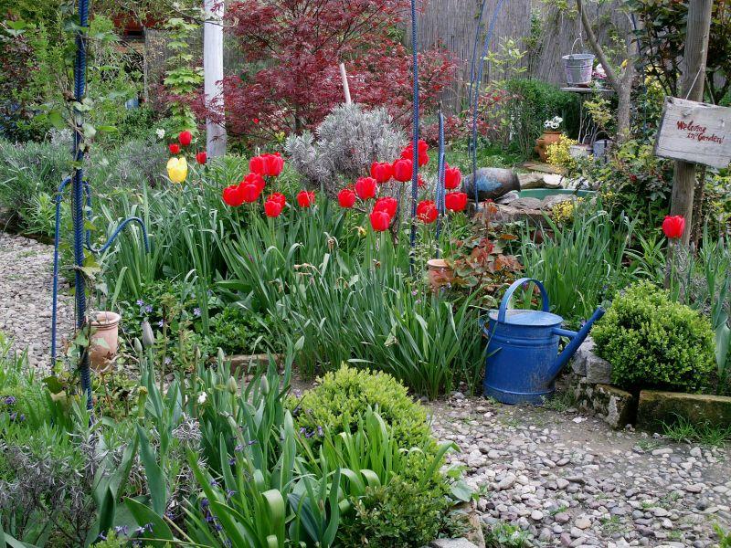 Blue Hortensia: Cvjetna stolica...