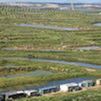 tn_portugal2010_126.jpg