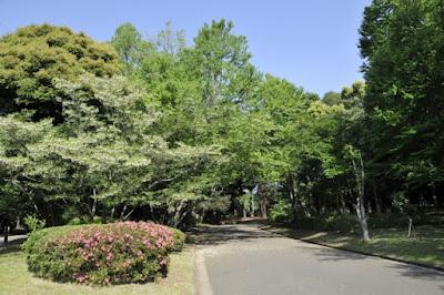萩本欽一が駒沢大学自主退学で示した大学生活に対する2つの教訓