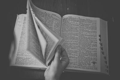 dictionary-698538__340.jpg