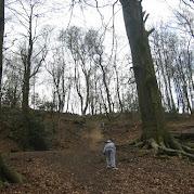 JS Bilberry Hill 2010 044.jpg