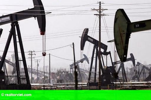 Hình 1: Thị trường dầu mỏ thế giới tăng, giảm đan xen trong tuần qua
