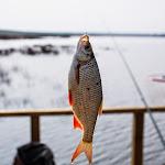 20140404_Fishing_Prylbychi_017.jpg