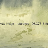 _DSC7516.thumb.jpg
