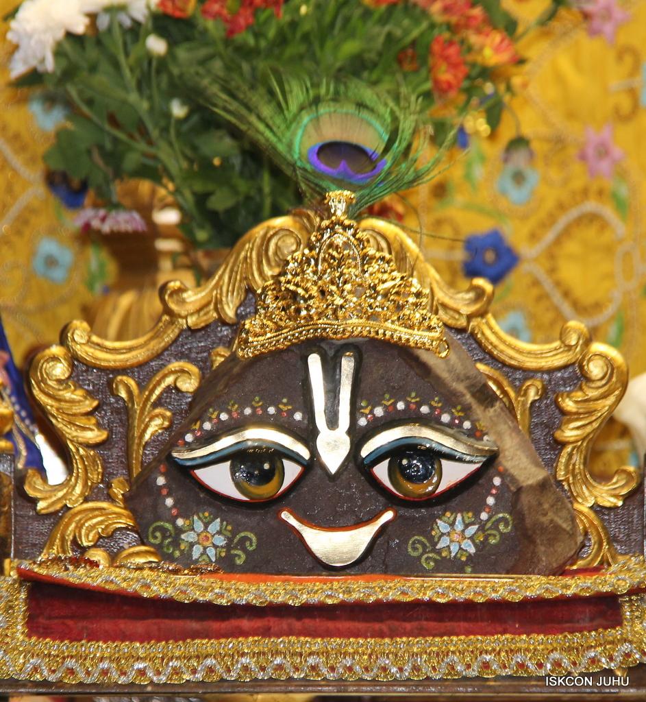 ISKCON Juhu Sringar Deity Darshan on 2nd Oct 2016 (23)