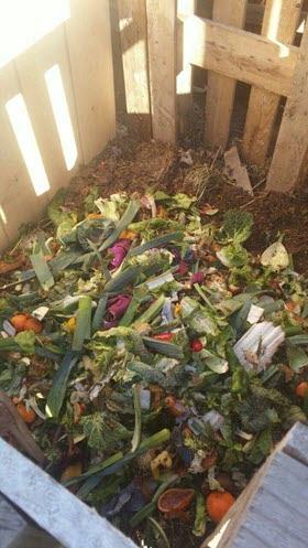 1.464 kg de materia orgánica recuperada a la semana. Madrid Agrocomposta Junio 2016