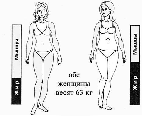 �збыточный вес и процент жира