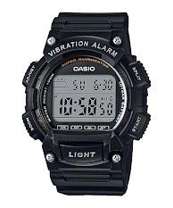 Casio Standard : LTP-1373D