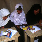 Bibliothèque de Shinia (Afghanistan)