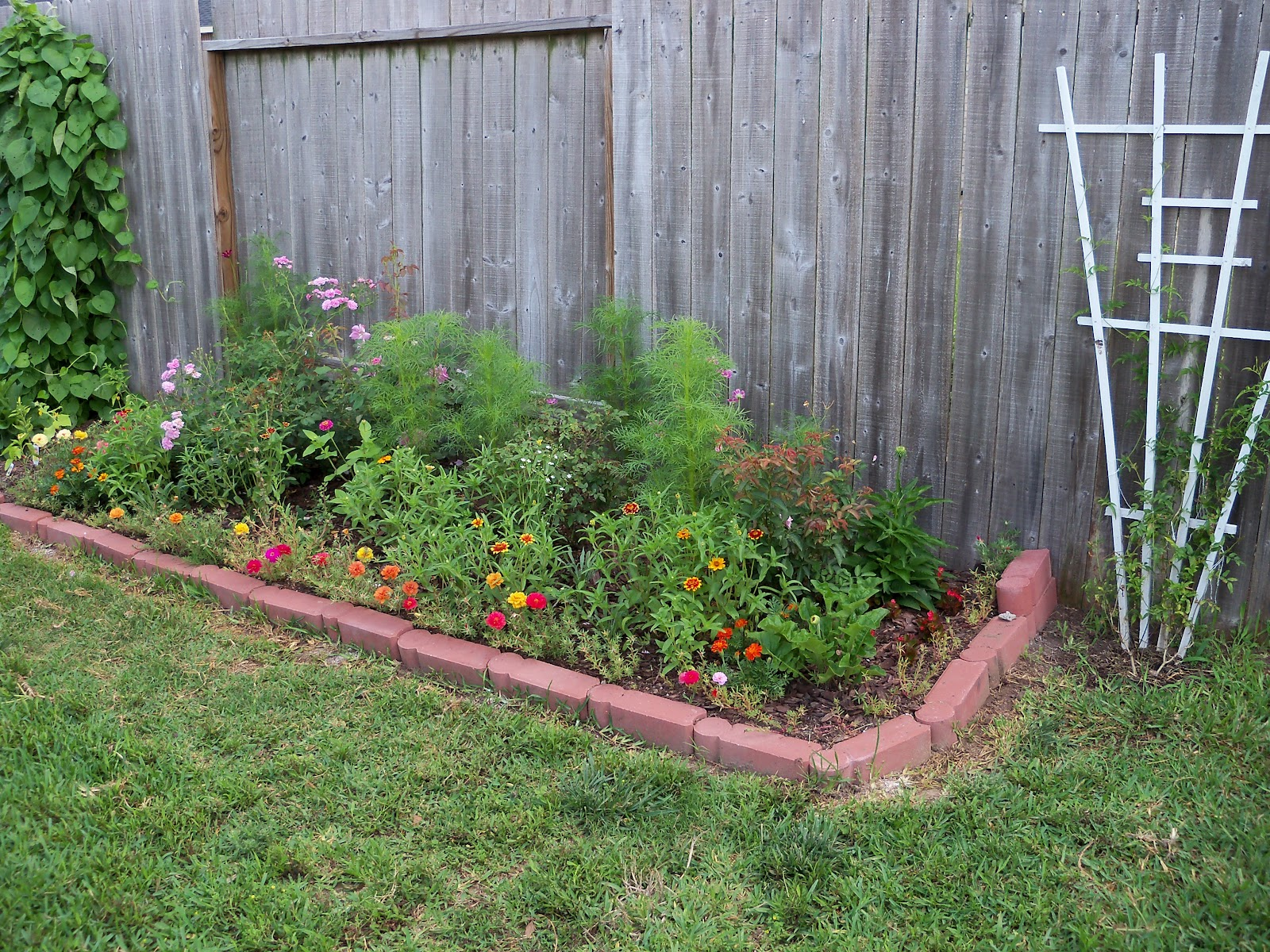 Gardening 2010, Part Two - 101_2556.JPG