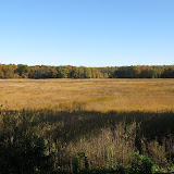 Guilford Salt Meadow Sanctuary Osprey Platform - sfs%252C10-25-09%2Bosprey%2Bplatform%2Binstall%252C003.JPG