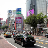 shibuya crossing in Shibuya, Tokyo, Japan