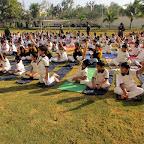 Yoga Session (III to VIII) 18-2-2017