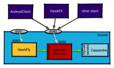 Hawk service via docker