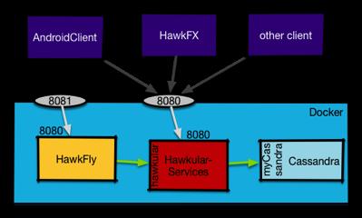 Hawk service via docker