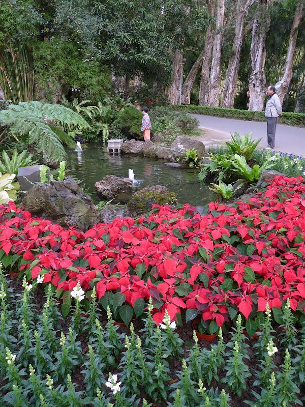 TAIWAN.Taipei. Dans le jardin de lune des nombreuses résidence présidentielle de CKS - P1050047.JPG