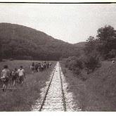 n029-010-1966-tabor-sikfokut.jpg