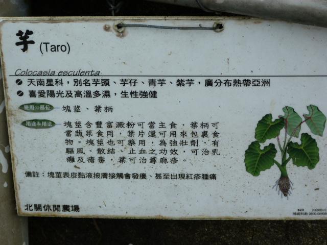 TAIWAN.Toucheng .musée du crabe situé au Pei Kan Resort, surfers,maison Japonaise du chef de gare - P1080811.JPG