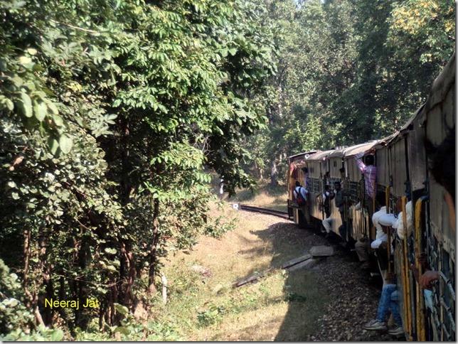 Satpura Narrow Gauge Train