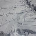 obavijesti u snijegu