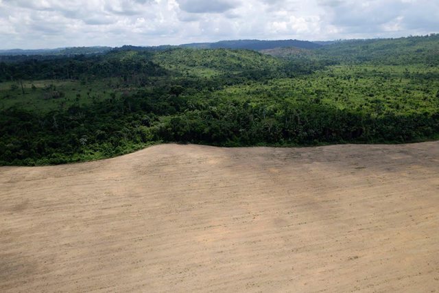 Deforestation in the Brazilian Amazon, 1 December 2016. Photo: Ueslei Marcelino / Reuters
