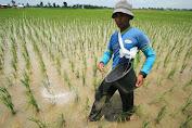 DPRA Minta Pemprov atasi Kelangkaan Pupuk Bersubsidi di Aceh