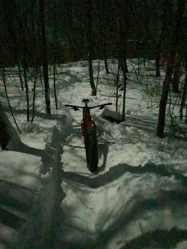 Moonlight ride later! Incredible light with so much snow cover in woods