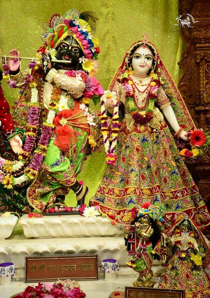 ISKCON GEV Deity Darshan 20 Jan 2017 (19)