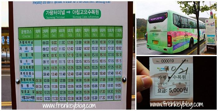 Jadwal, Tiket dan Penampakan Shuttle Bus Tour Nami Island