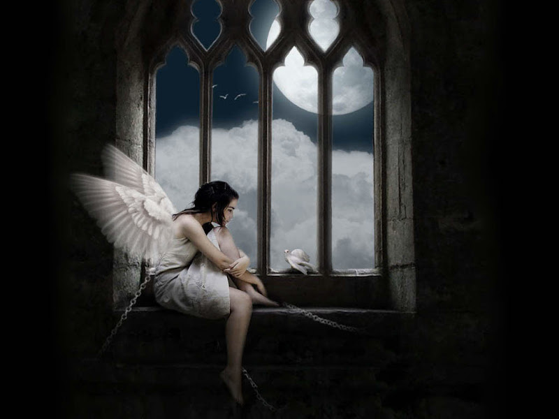 Angel Dove Prison, Angels 2