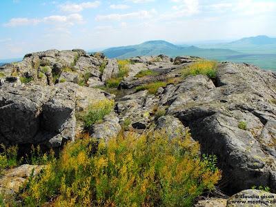 Muntii Macinului - privelisti de granit