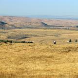 2010 Northwest Chukar Championship at the Robertson Ranch in Idaho