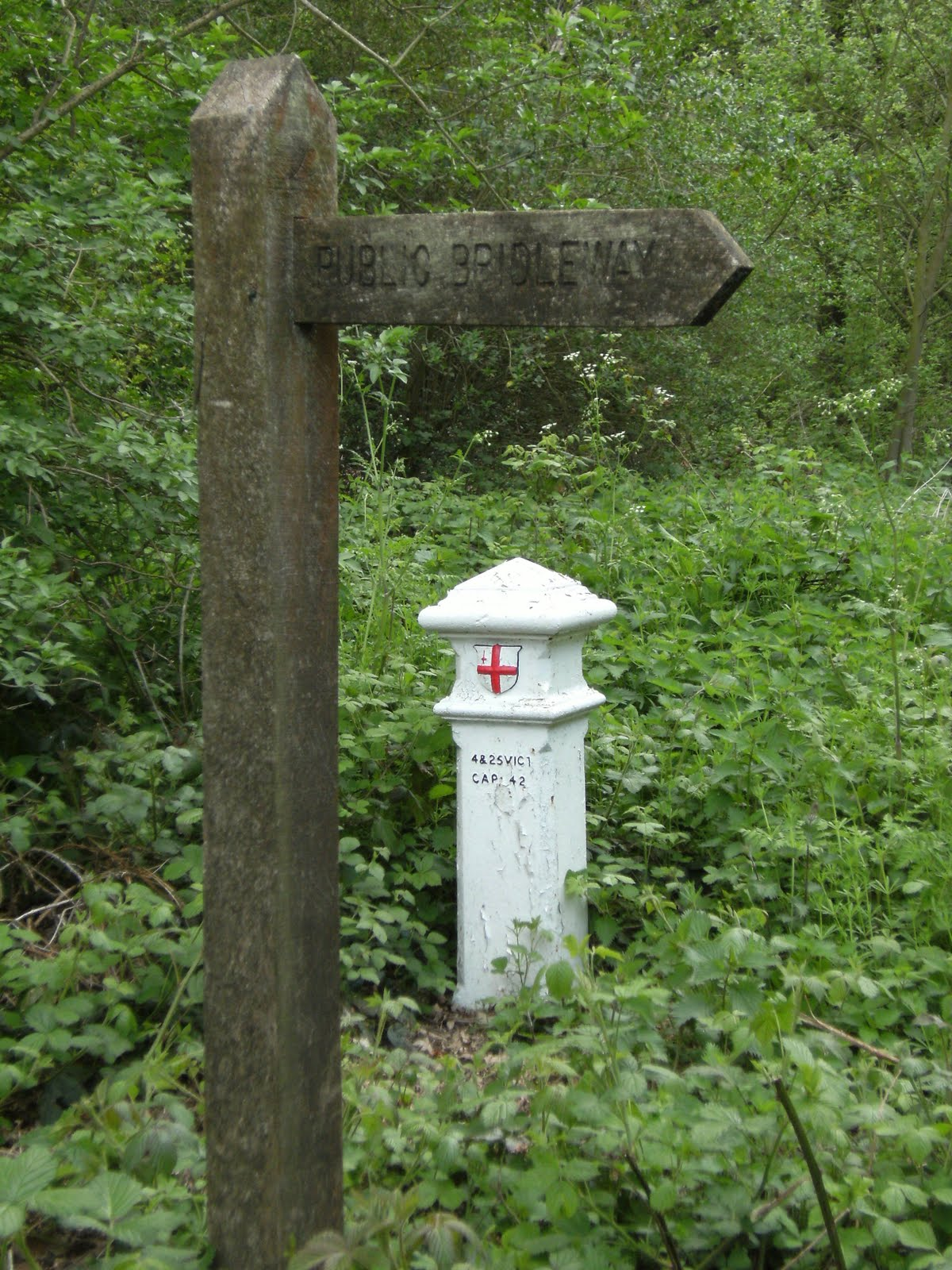 1005120053 Coal Tax Post, Littlepark Wood