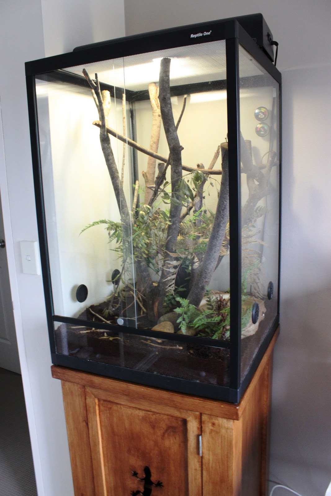 The Adventures of Jack and Ivy: Terrarium Stand