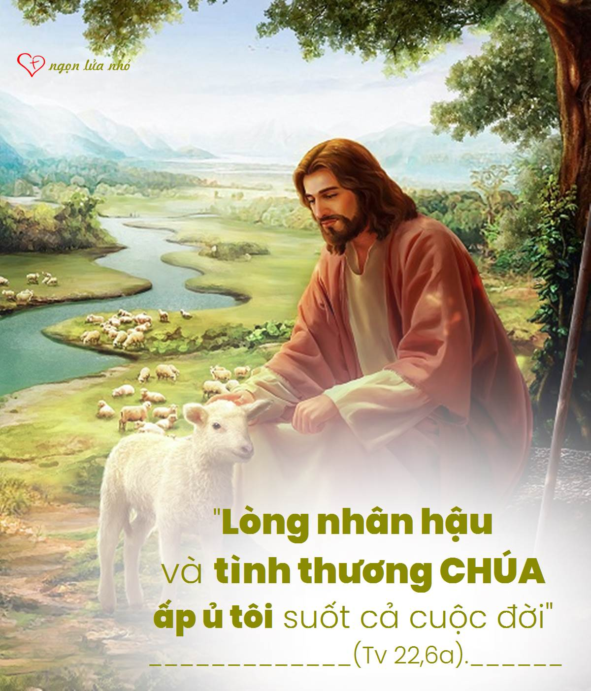 Lòng nhân hậu và tình thương CHÚA