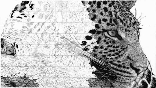 leopard-2015-01-8-17-10.jpg